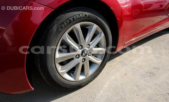 Acheter Importé Voiture Hyundai Elantra Rouge à Import - Dubai, Barh el Gazel