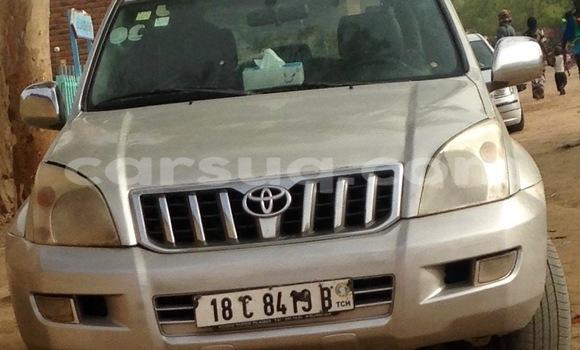 Acheter Occasion Voiture Toyota Land Cruiser Gris à N'Djamena au Tchad