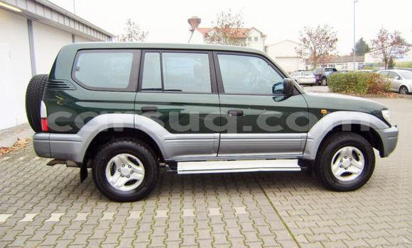 Acheter Occasion Voiture Toyota Land Cruiser Vert à N'Djamena, Chari-Baguirmi