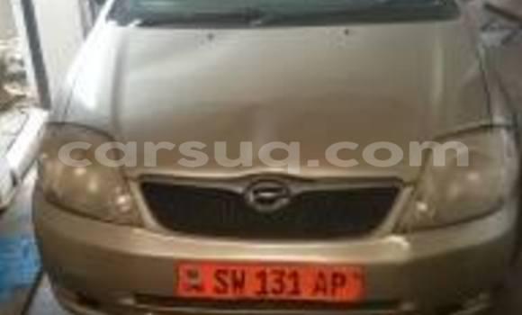 Acheter Occasion Voiture Toyota Allex Autre à N'Djamena au Tchad