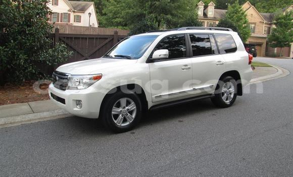 Buy New Toyota Land Cruiser White Car in Am Timan in Chad