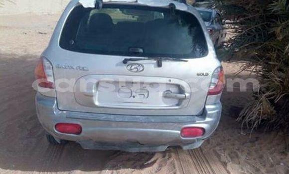 Acheter Occasion Voiture Hyundai Santa Fe Gris à Moundou au Tchad