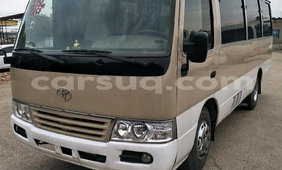 Acheter Occasion Utilitaire Toyota Coaster Beige à N'Djamena au Tchad