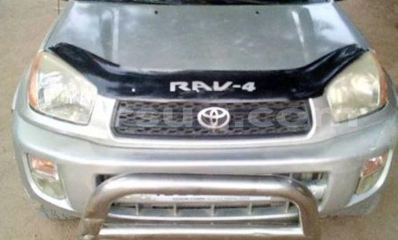 Acheter Occasion Voiture Toyota RAV4 Gris à Am Timan, Salamat Region