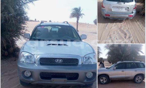 Acheter Occasion Voiture Hyundai Santa Fe Gris à Am Timan, Salamat Region