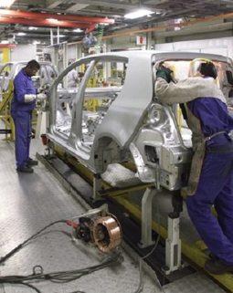 Thumb assembly plant